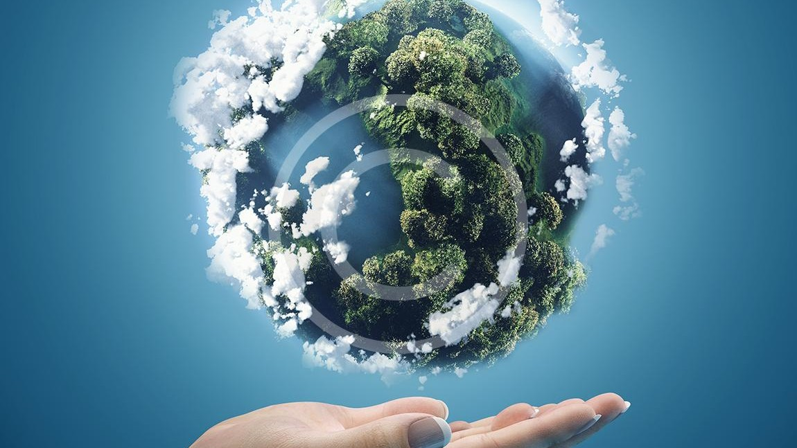 Investments Into the Nature's Future